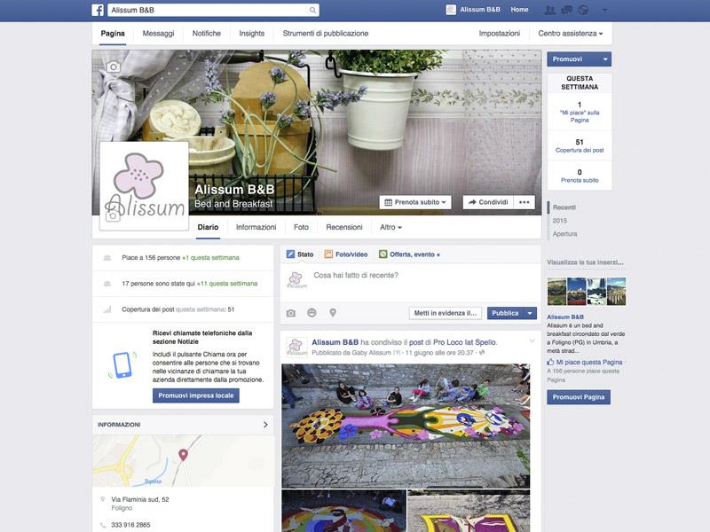 Pagina-Facebook-Alissum