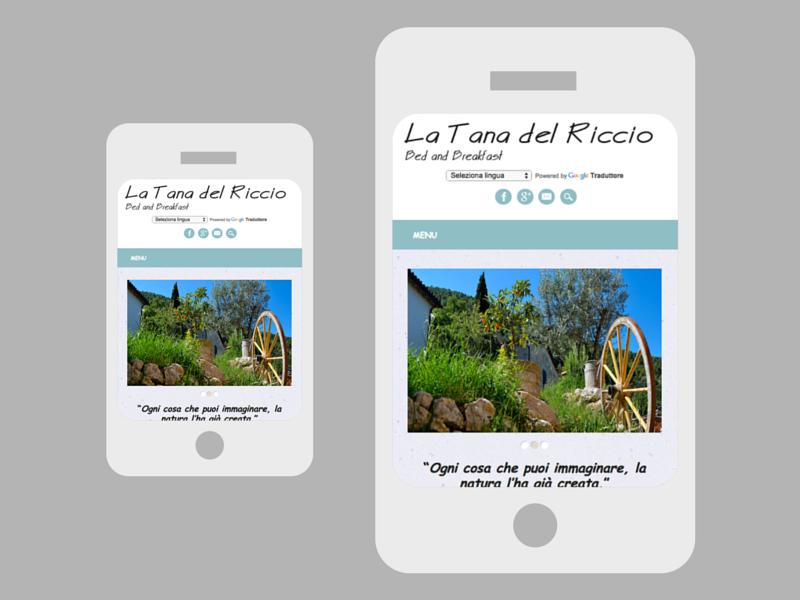 Sito web La Tana del Riccio 01